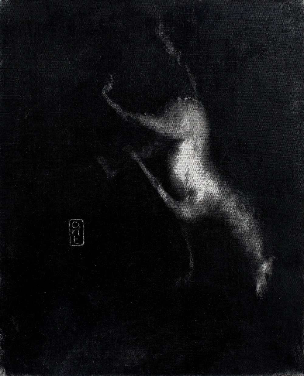 2010. Falling Horses: Chloe, Pigment & Gesso on Linen. 800 x 650mm.