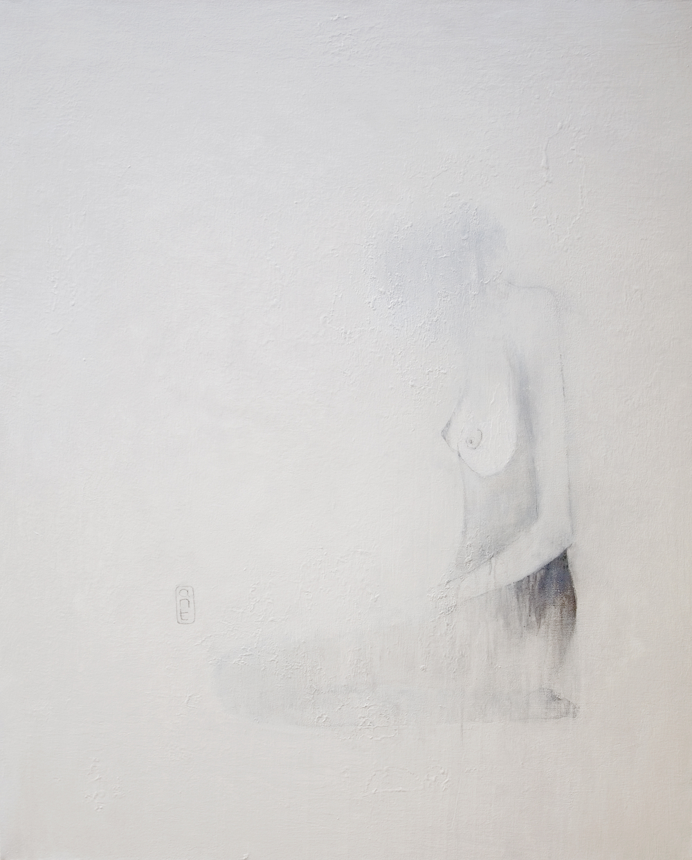 2009 End of Noise: no no nii white Gesso, Pigment & Charcoal on Canvas 1110 x 1360mm