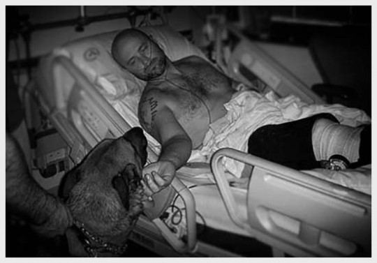 K9_Jim_hospital_bed-copy2-e1426734955698.jpg