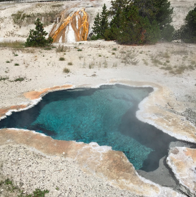 Colter_co_yellowstone