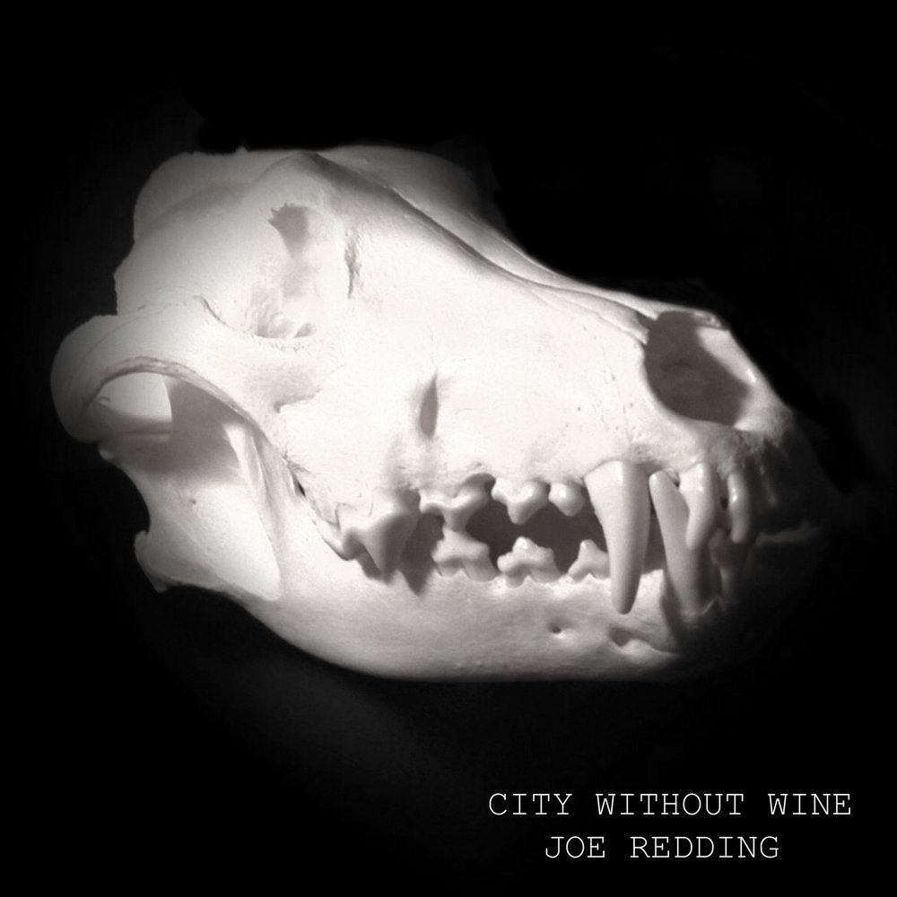 City Without Wine Cover.jpg