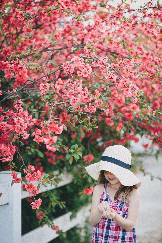 Lisa Wise - KodakPortra 800 - www.lisawisephotography.net
