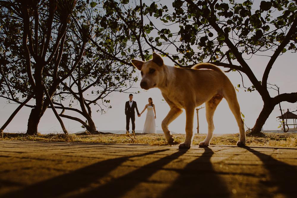 looks_like_film_10_questions_with_pande_heryana_wedding_bali