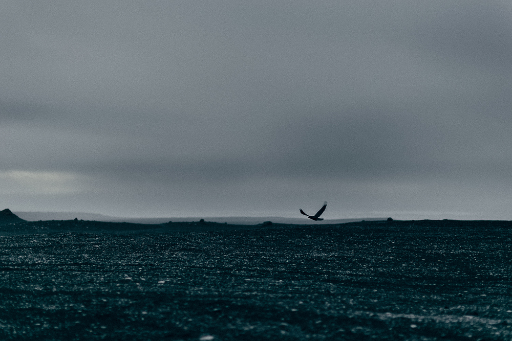 P&JJ-Iceland-583.jpg