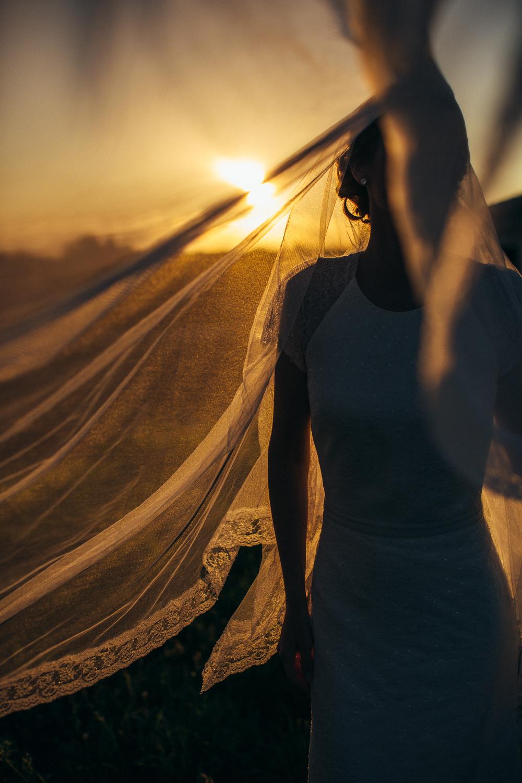 Stephen Liberge - Kodak Max 800