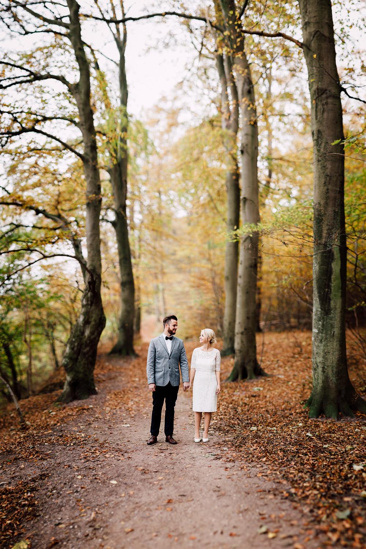 Anders Dalsgaard - Kodak Gold