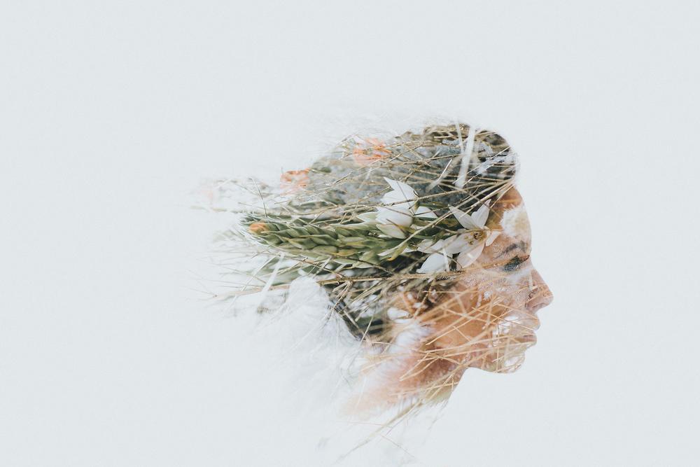 Louise Miller - Tribe Archipelago LXC03
