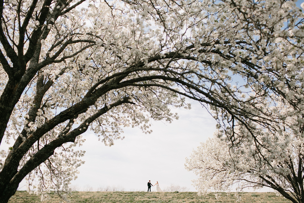 Rachel Meagan Hicks - Kodak Portra 400