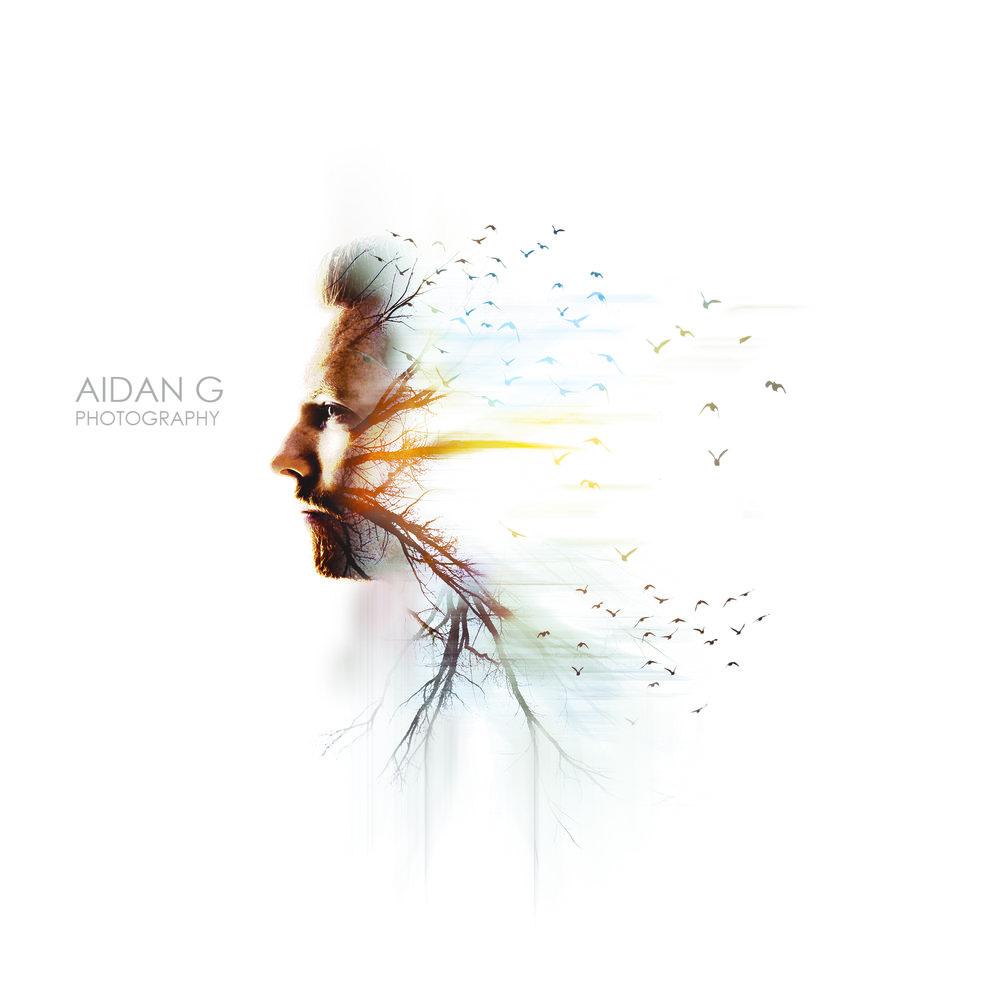 Aidan Guerra - LXCN 03