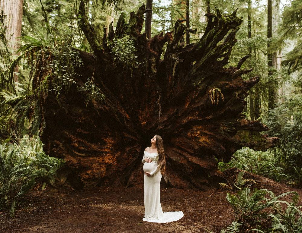 Aly Whitney-Plaut - Meridian Cascade