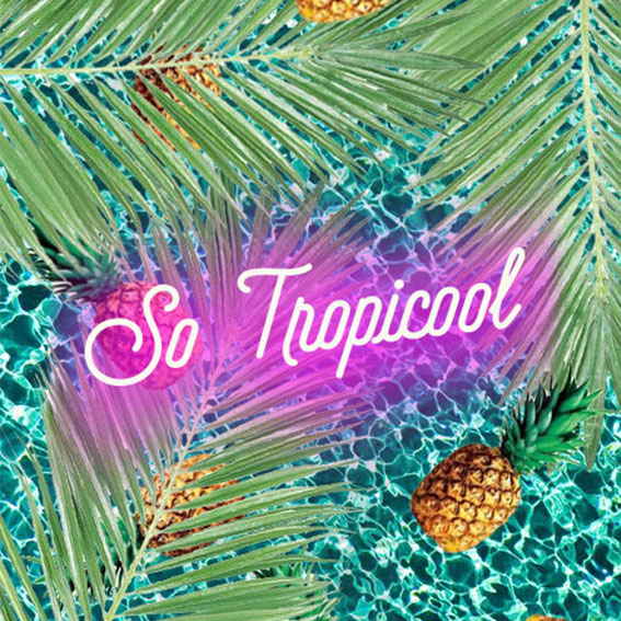 Box à thème - So tropicool