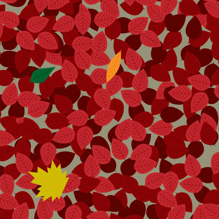 1A_Leaf-08.jpg