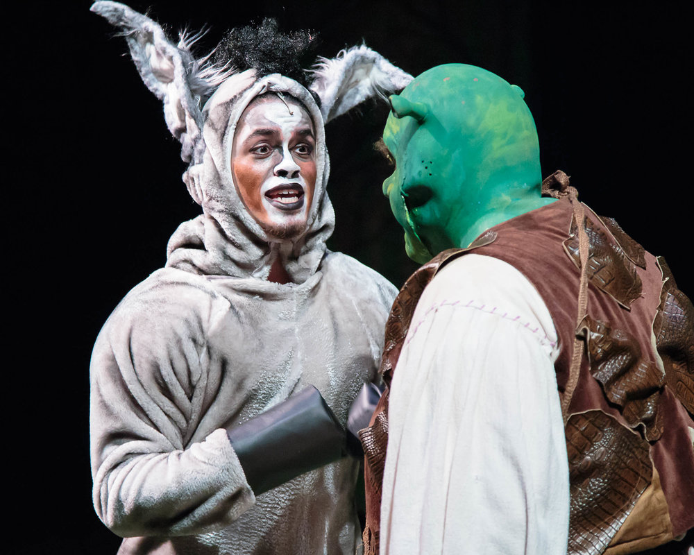 ShrekMusical-033.jpg