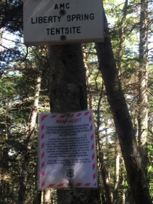 Bear alert at the AMC Liberty Spring Tentsite.