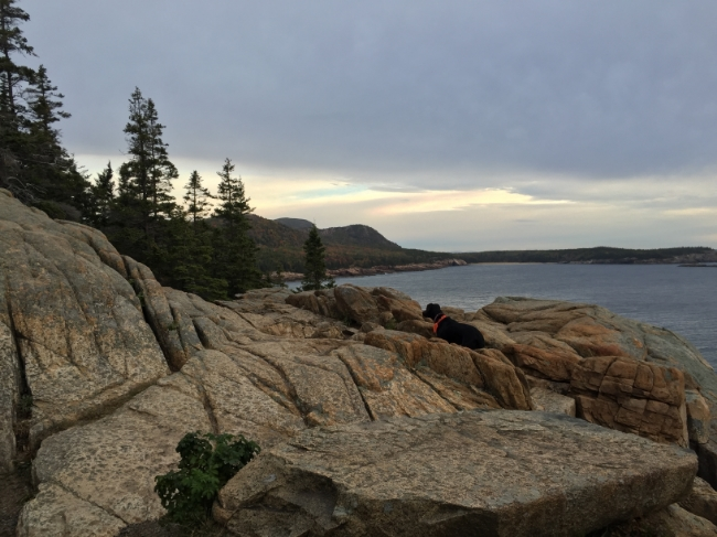 Dawn in Acadia National Park