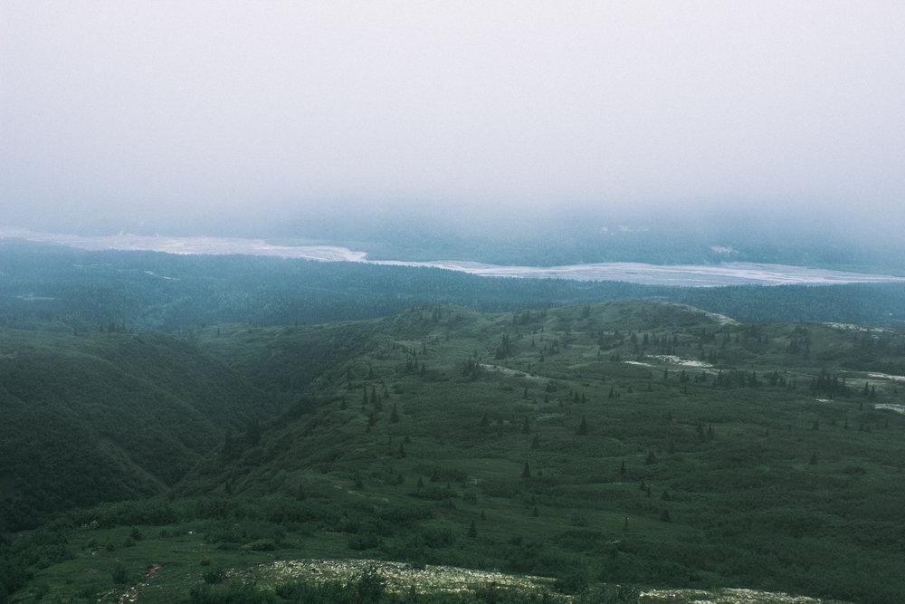 Overcast in Denali State Park