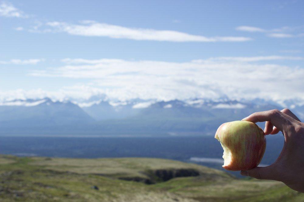 Kesugi Ridge Trail in Alaska