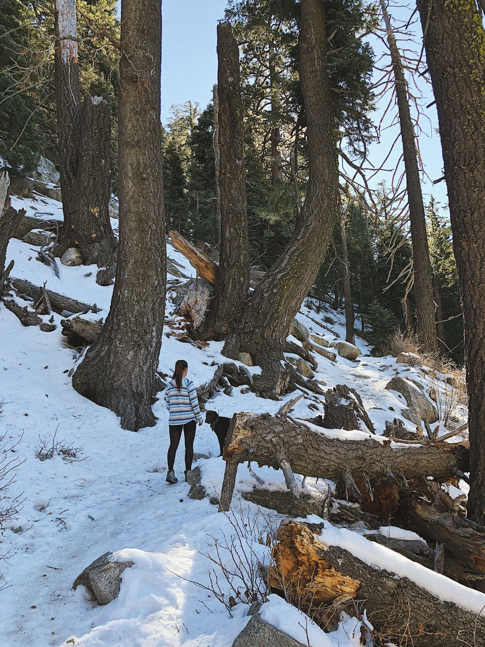 Tahquitz Peak via Devils Slide Trail