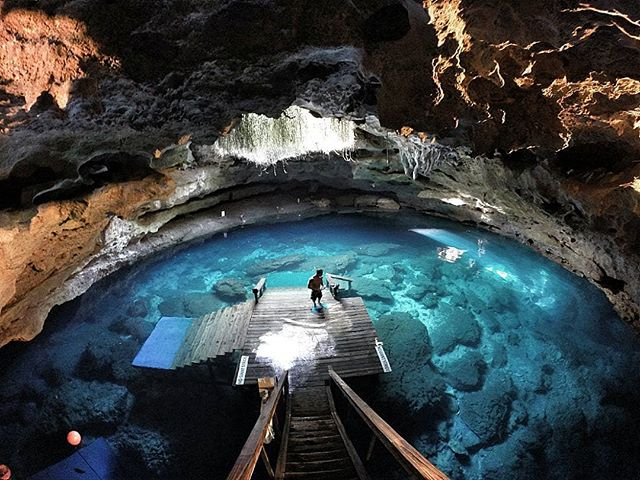 the beauty of florida #devil #devilden #underwater #goprophotography #florida #underground #springs #devilpool #caves #cave #cueva #underwaterphotography #gopropicture #goodtimes #saturday #lowlight #williston #devilsden #rocks #scuba #diving #scubadiving #deepdiving #scuba #javierospina #gopro