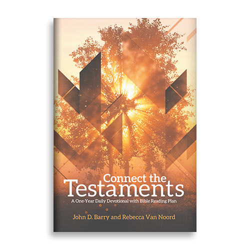 LP_0013_Connect-the-Testaments.png