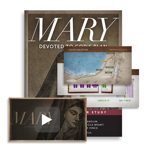 LP_0000_Mary_Bible-Character-Curriculum.png