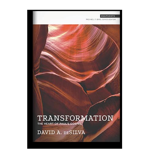 LP_0007_Transformation_Snapshots.png