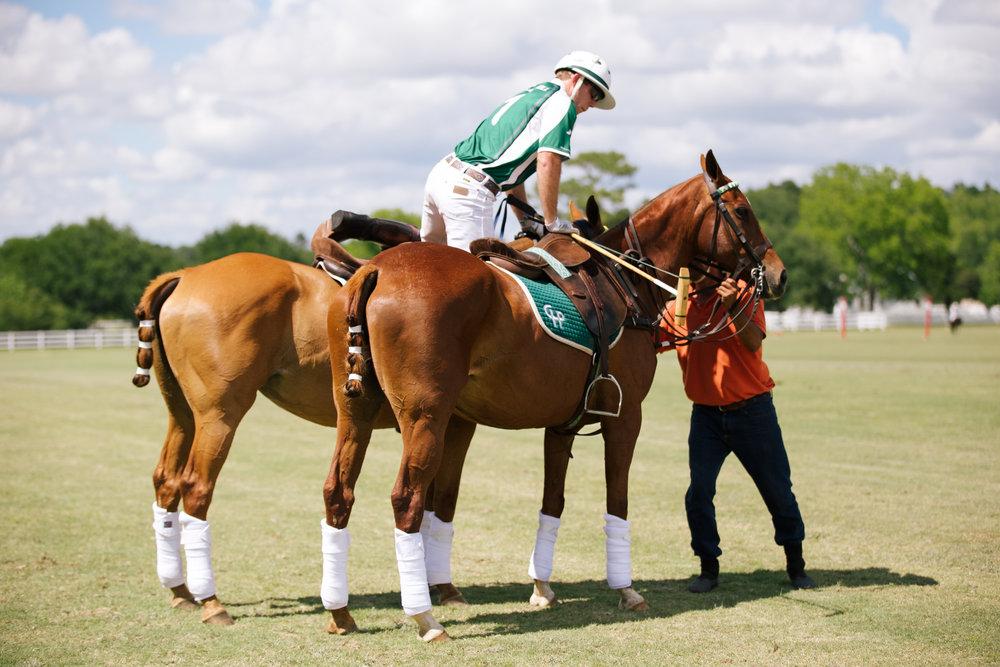 polo (25 of 120) copy.jpg