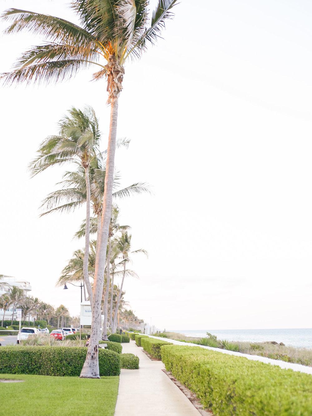 LCB STYLE FASHION BLOGGER COLONY HOTEL PALM BEACH-10.jpg