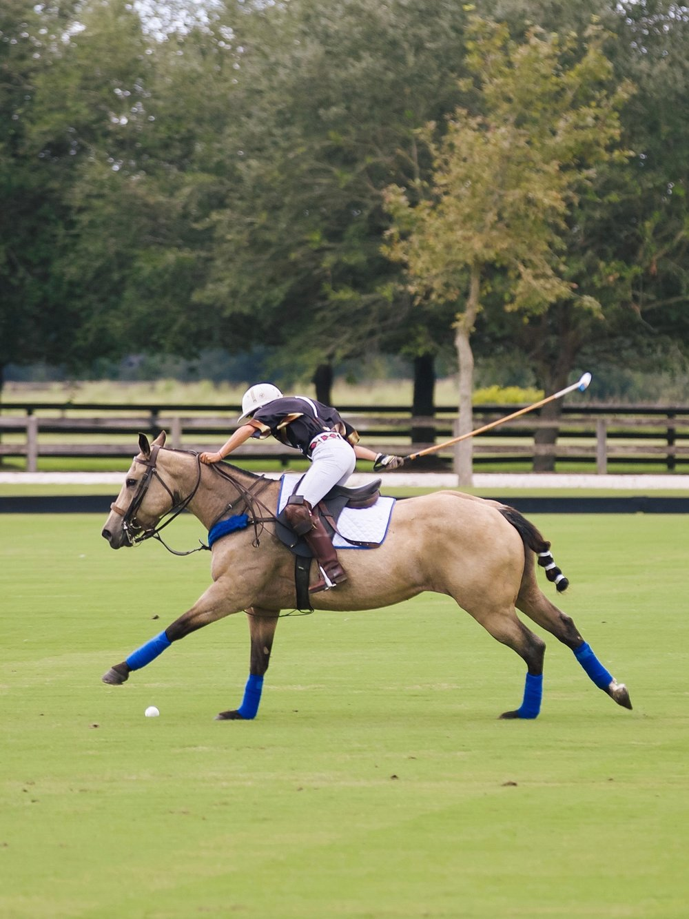 POINT CLEAR POLO OCTOBER-13.jpg