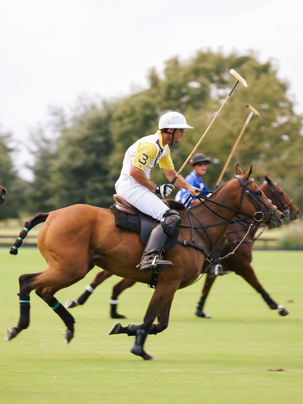 POINT CLEAR POLO OCTOBER-72.jpg