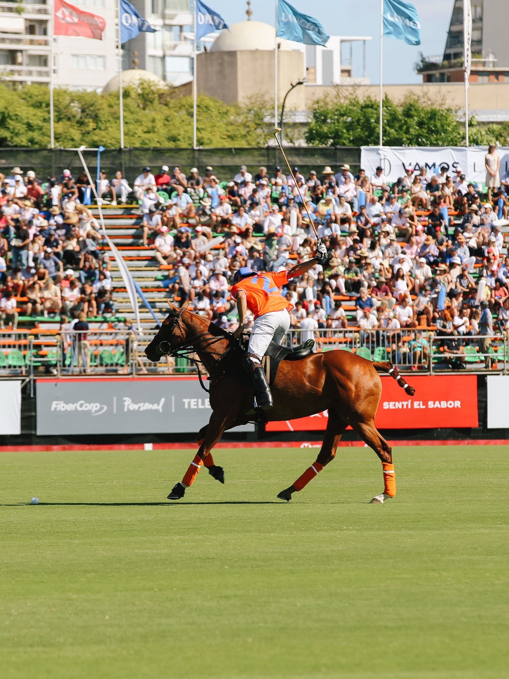 LCB STYLE ARGENTINE OPEN POLO PALERMO7.jpg