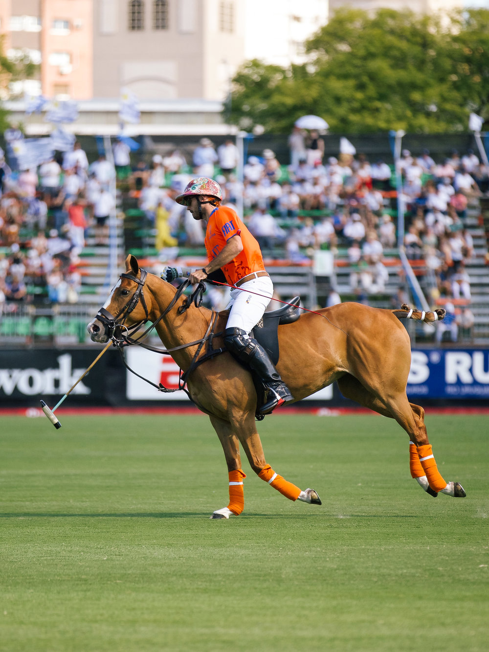 LCB STYLE ARGENTINE OPEN POLO PALERMO11.jpg