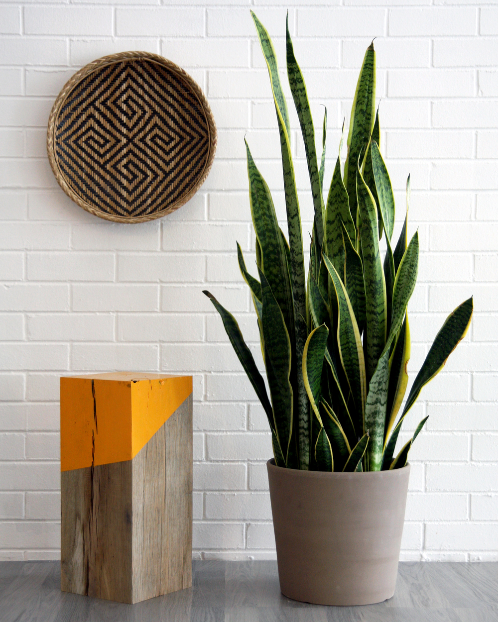 Solid Timber Side Table with Orange Stripe Detail