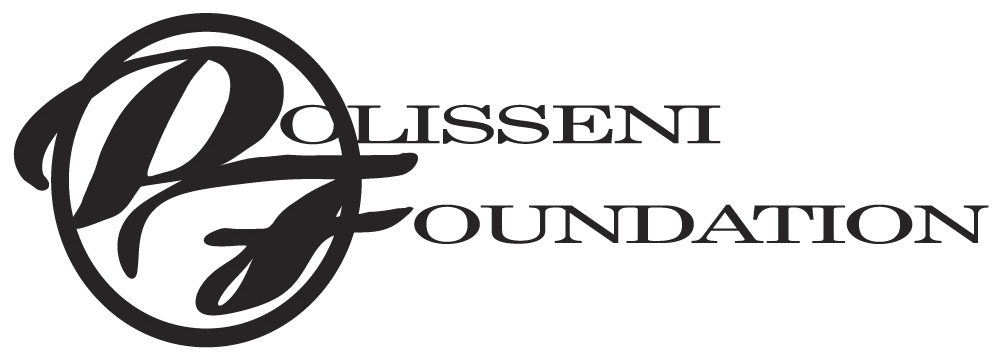 Polisseni Foundation Logo 2015_final.jpg