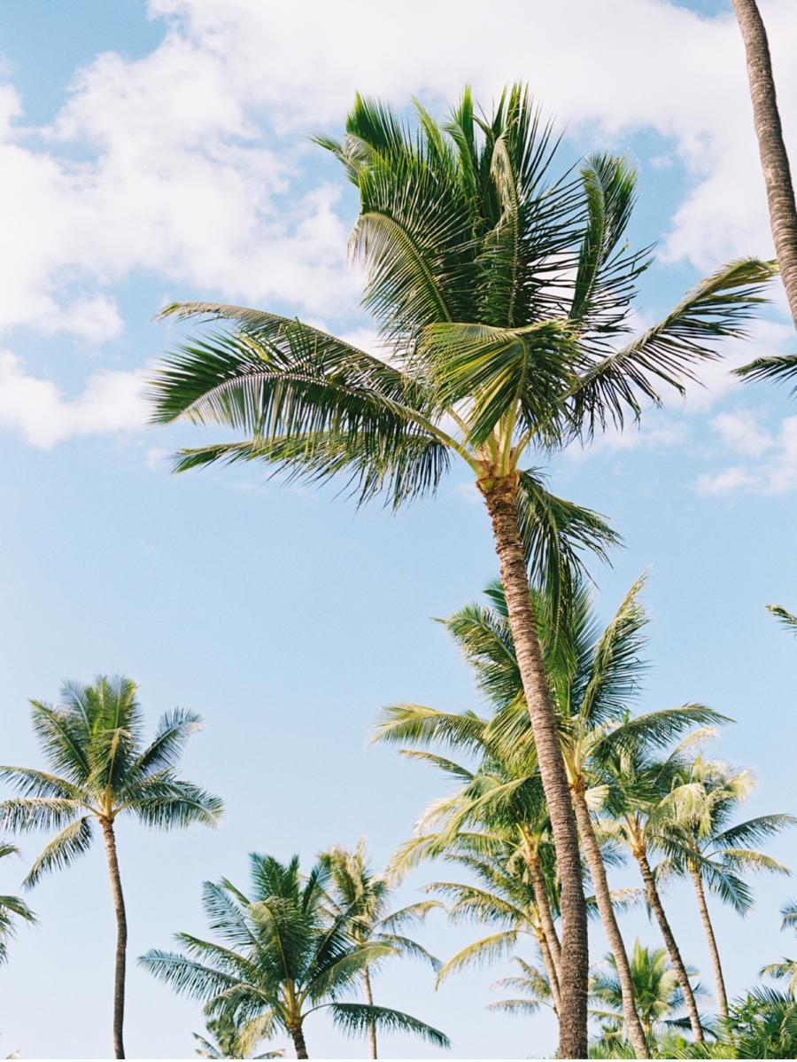 Canadian-Destination-Wedding-Blog