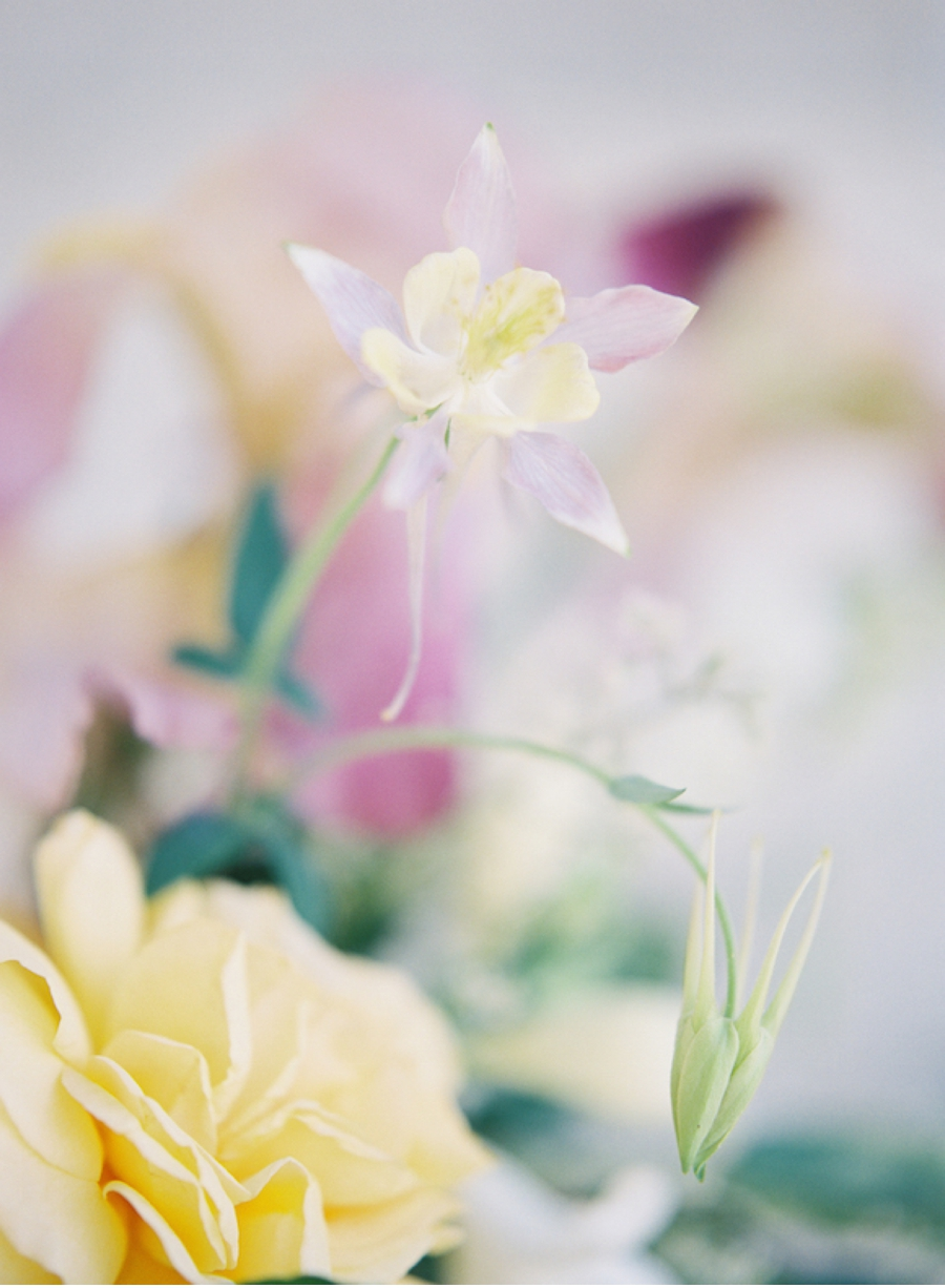 Closeup-yellow-purple-floral-arrangement
