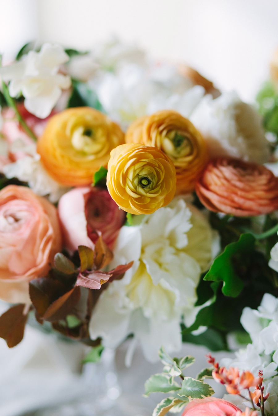 Yellow-and-Coral-Ranunculus