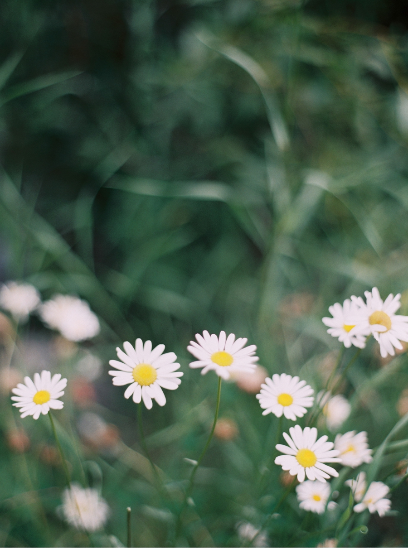 ©Orange_Photographie_060.jpg