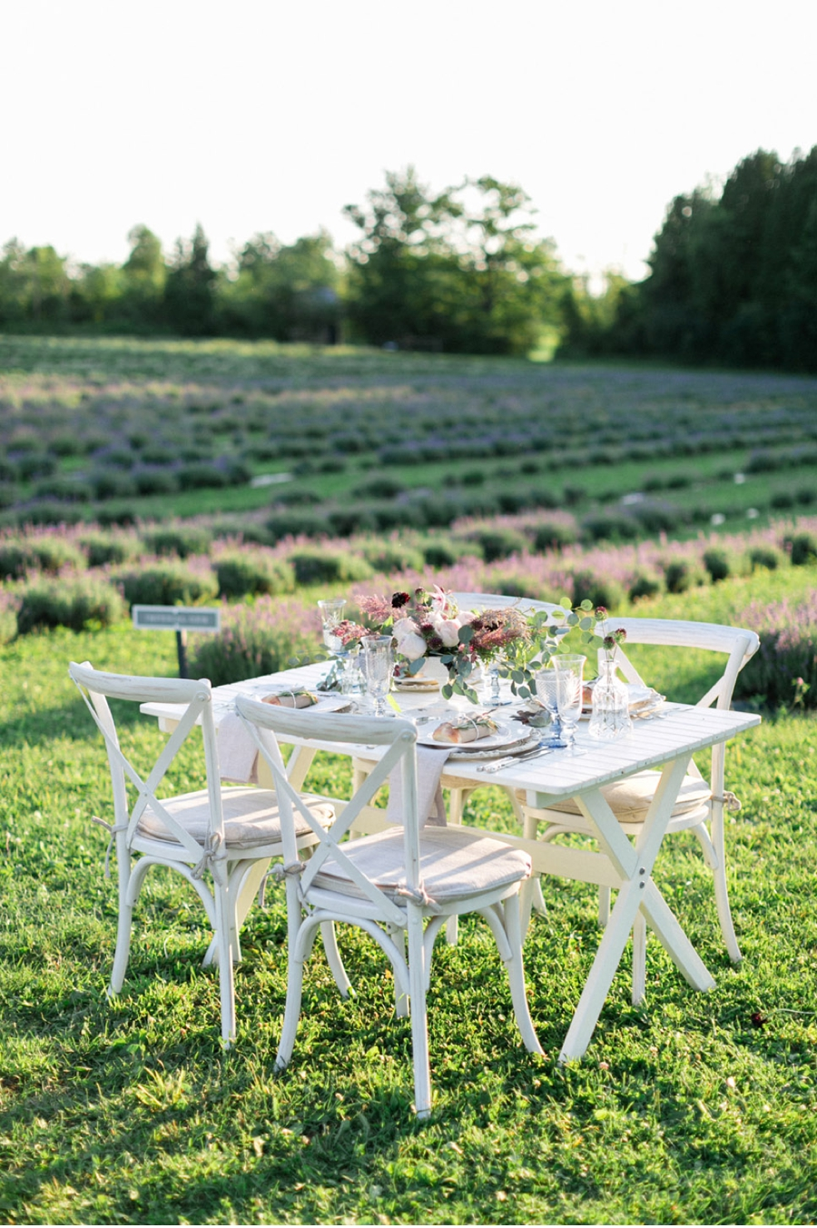 Wedding-Reception-for-Lavender-Farm