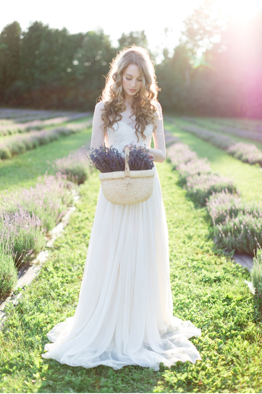 Bride-at-Lavender-Farm-Ontario