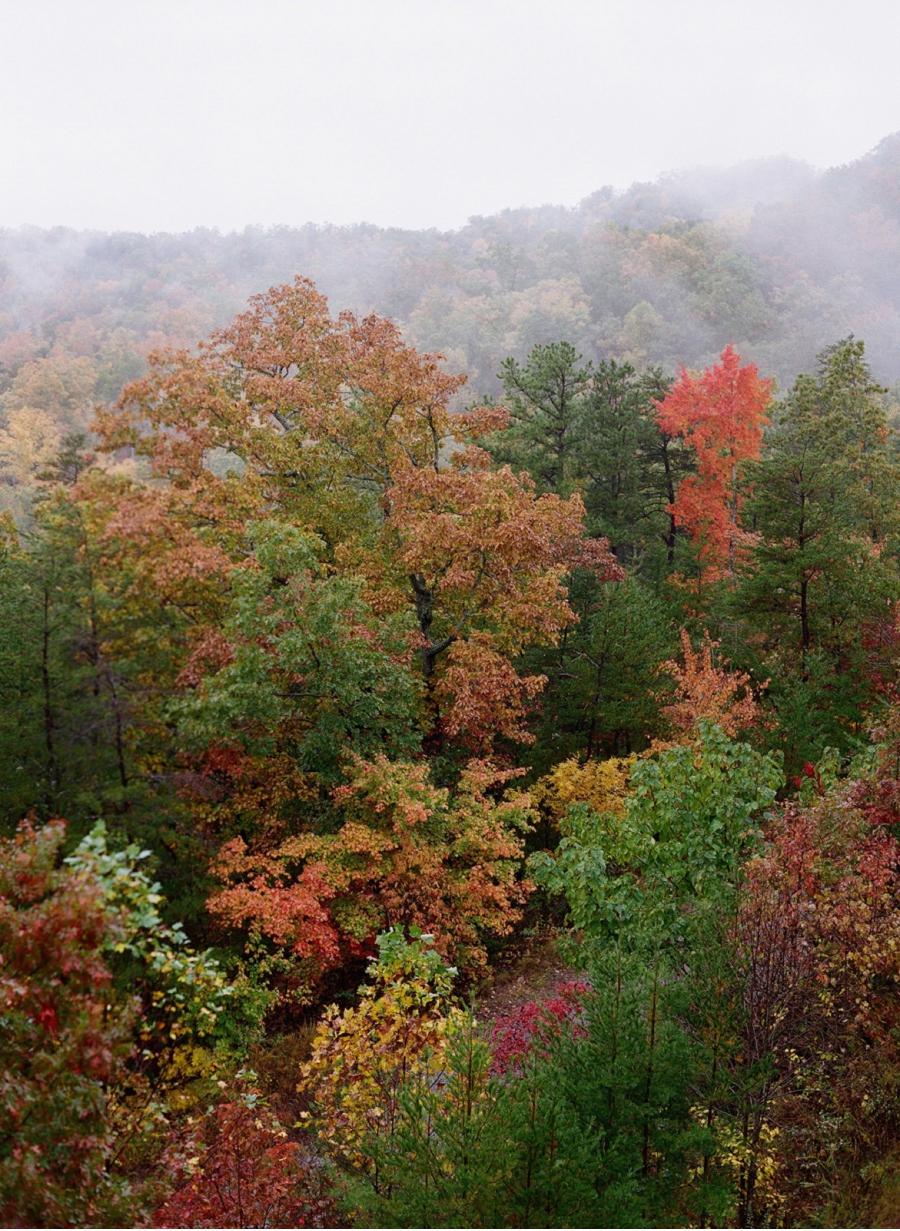 Autumn-Foliage-Smoky-Mountains