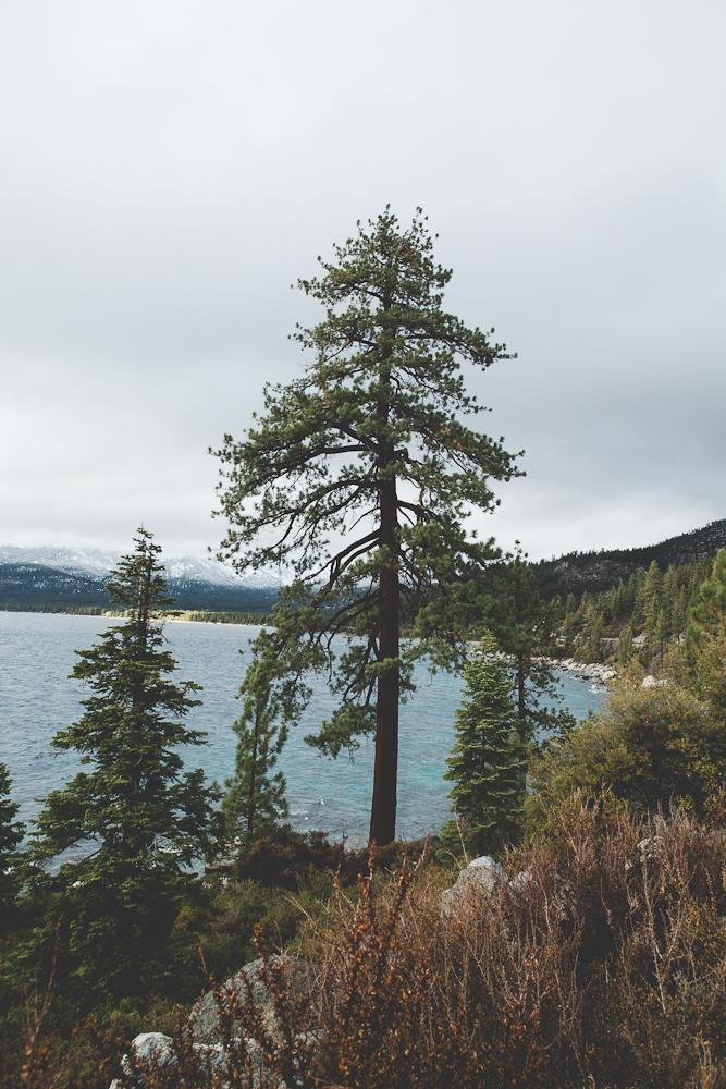 Lake Tahoe-40.jpg
