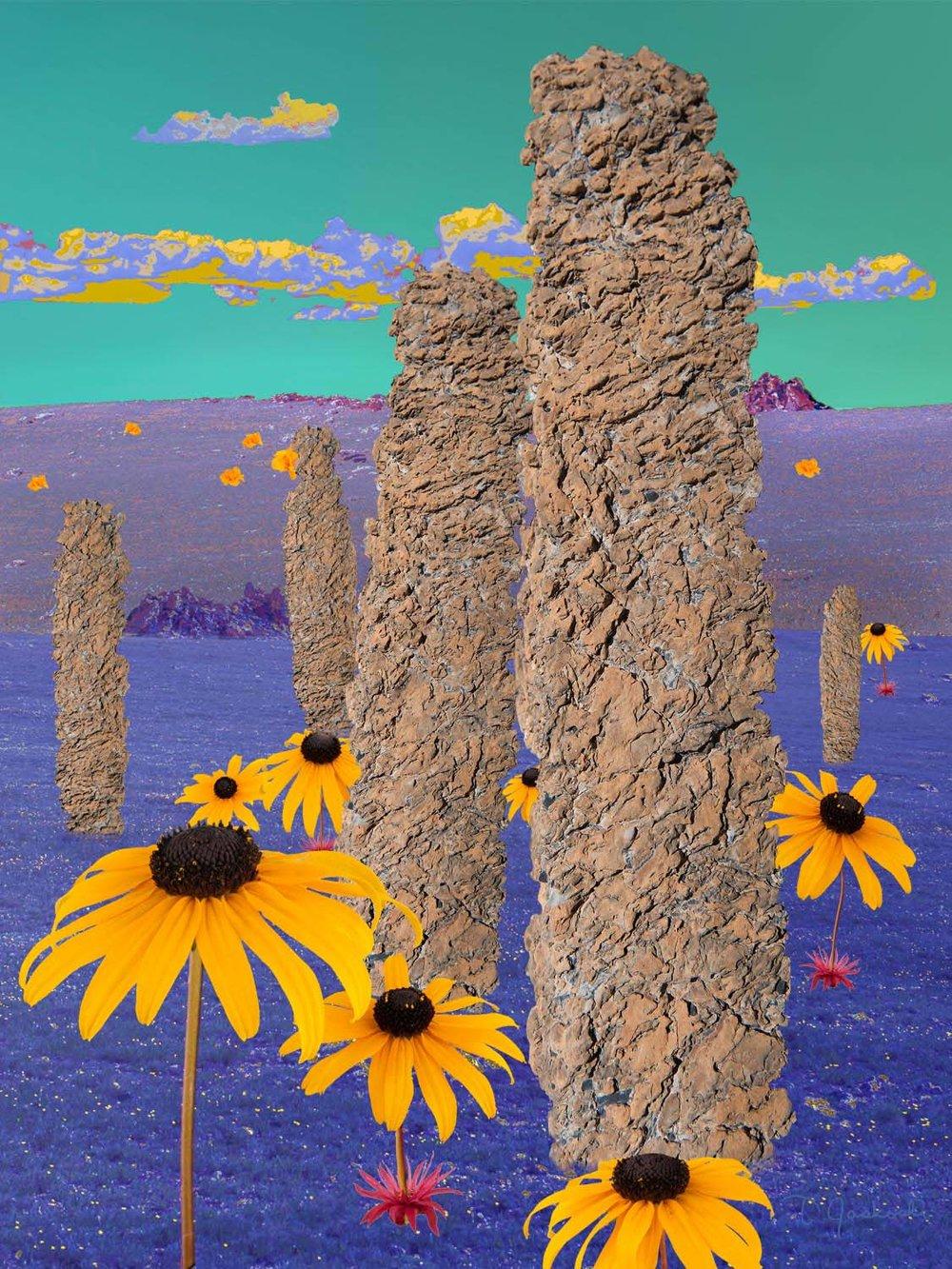 Monolith Meadow
