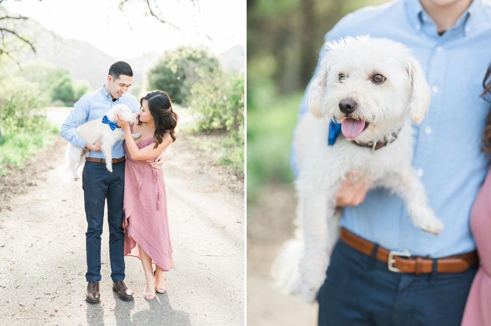 malibu_creek_state_park_engagement_session_los_angeles_fine_art_wedding_photographer-6.jpg