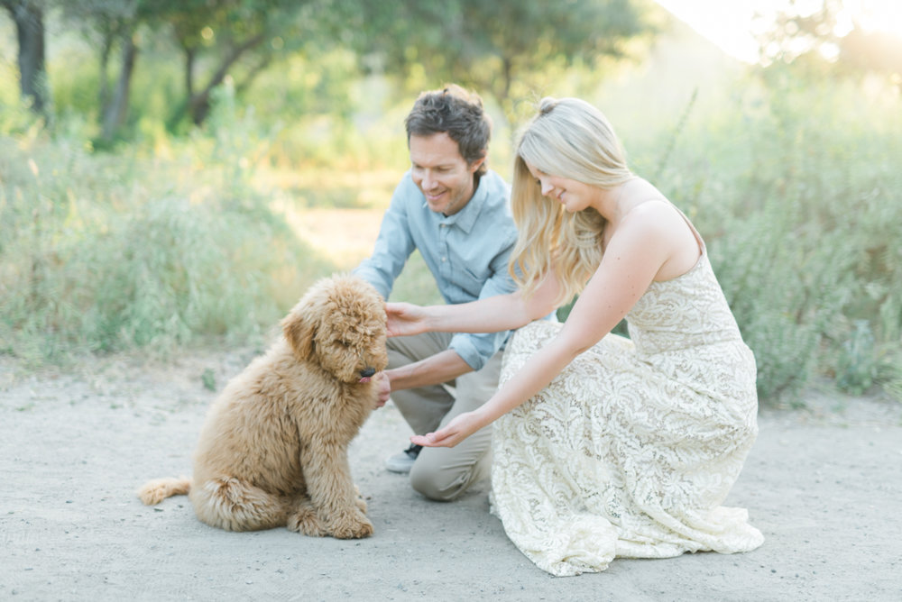 San_Juan_Capistrano_Goldendoodle_family_portrait_session_los_angeles_wedding_photographer-9.jpg