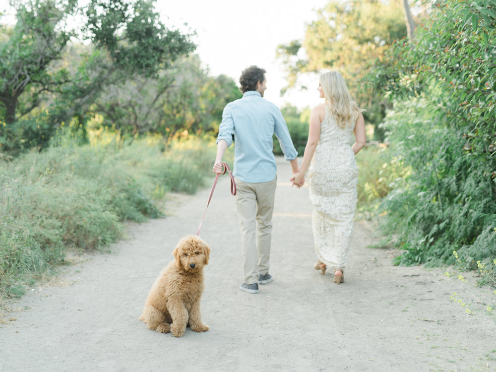 San_Juan_Capistrano_Goldendoodle_family_portrait_session_los_angeles_wedding_photographer-12.jpg