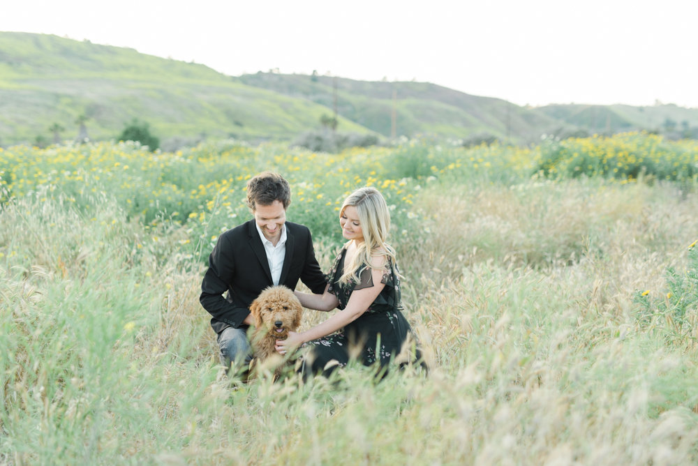 San_Juan_Capistrano_Goldendoodle_family_portrait_session_los_angeles_wedding_photographer-23.jpg