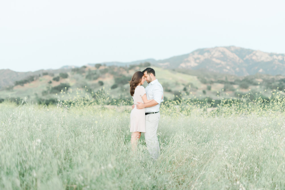 a&a_malibu_creek_state_park_engagement_session_los_angeles_fine_art_wedding_photographer-29.jpg