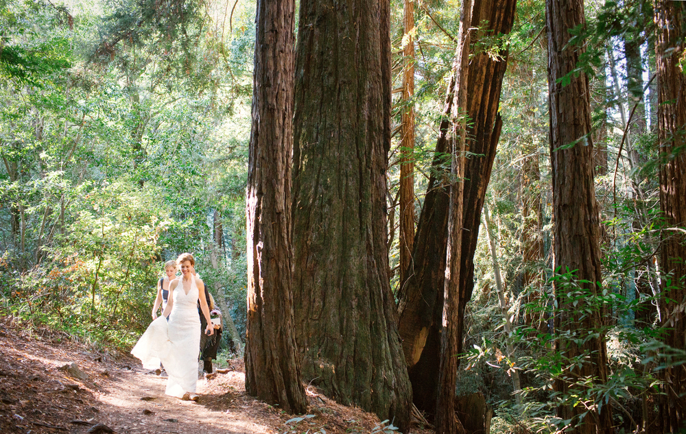 Sheridan and Lynda walking through the redwood forestto the ceremony site in their wedding dresses.