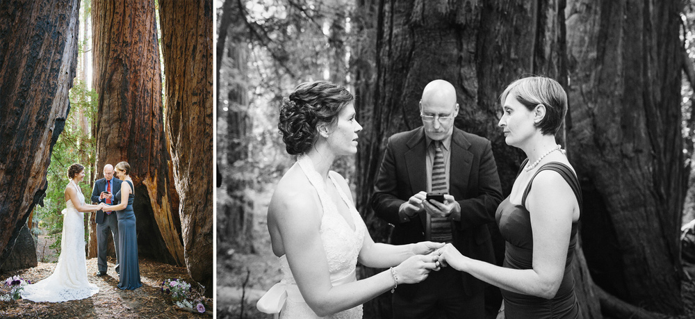 The wedding ceremony amongst the redwoods in Big Sur.